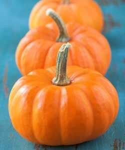 Нанесете ги своите кадрици оваа есен