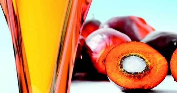 4 oleje (które nie są kokosowe), aby przejść przez zimę