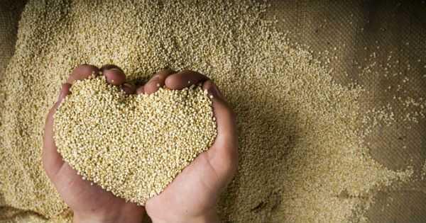 4 λόγοι κάθε σγουρά θα πρέπει να αγαπούν αυτό το εκχύλισμα φυτών Andean