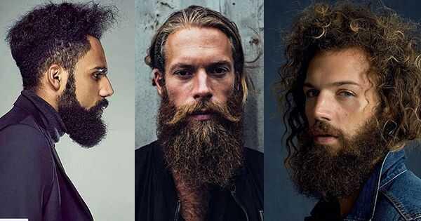 9 najboljih brada proizvoda za lumbersexuals